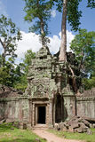 Ta Prohm in Angkor Royalty Free Stock Photography
