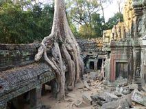 Ta Prohm, Angkor Royalty Free Stock Photography