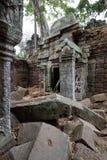 Ta Prohm, Angkor, Cambodia Stock Photos