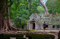 Ta Prohm, Angkor Wat Royalty Free Stock Images