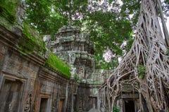 Ta Prohm in Angkor Wat Stock Image