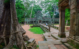 Ta Prohm, Angkor Wat Stock Photo