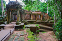 Ta Prohm, Angkor Wat Royalty Free Stock Photography