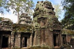 Ta Prohm in Angkor Wat royalty free stock photo