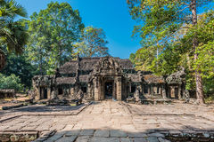 Ta prohm angkor wat cambodia Royalty Free Stock Photos