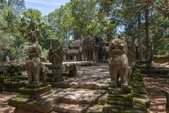 Ta Prohm, Angkor Wat, Cambodia Royalty Free Stock Images