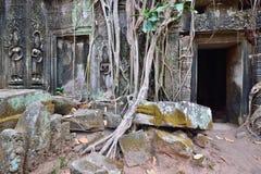 Ta Prohm at the Angkor Wat Stock Photography