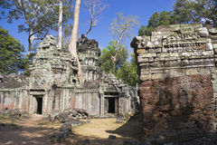 Ta Prohm, Cambodia Stock Images
