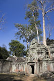 Ta Prohm, Cambodia Stock Photography