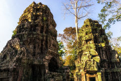 Ta Prohm in Cambodia Royalty Free Stock Image
