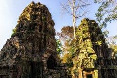 Ta Prohm in Cambodia Royalty Free Stock Image