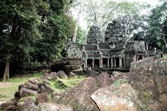 Ta Prohm Cambodja är en av de mest favorit- templen av Angkor arkivfoton