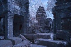 Ta prohm castle siem reap Cambodia Stock Image