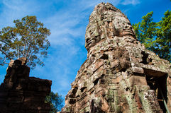 Ta Prohm Castle Stock Image