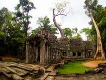 TA Prohm Castle, Angkor Wat, Καμπότζη Στοκ εικόνες με δικαίωμα ελεύθερης χρήσης