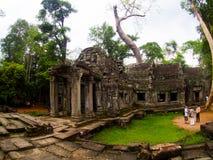 TA Prohm Castle, Angkor Wat, Καμπότζη Στοκ φωτογραφίες με δικαίωμα ελεύθερης χρήσης