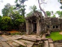 TA Prohm Castle, Angkor Wat, Καμπότζη Στοκ Φωτογραφία