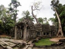 TA Prohm Castle, Angkor Wat, Καμπότζη Στοκ φωτογραφία με δικαίωμα ελεύθερης χρήσης