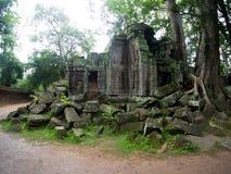 TA Prohm Castle, Angkor Wat, Καμπότζη Στοκ Εικόνες