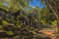Ta Prohm, część Khmer świątynny kompleks, Azja Siem Przeprowadza żniwa, Cambodi Fotografia Stock
