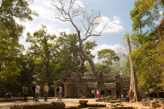 Ta Prohm East Entrance. With impresive tree Stock Photography