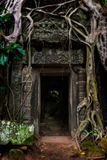 Ta Prohm. Enormous tree roots grow down around a doorway at Ta Prohm in Siem Reap, Cambodia Stock Photos