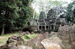 Ta Prohm Kambodja is één van de favorietste tempels van Angkor Stock Foto's