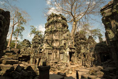 Ta Prohm mess. Ta Prohm inner tower adn tree Stock Photo