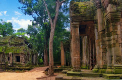 Ta Prohm, part of ancient  Khmer temple complex in jungle. Stock Photography