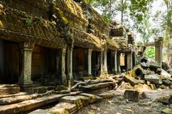 Ta Prohm. Part of Khmer Angkor temple complex, popular among tourists ancient landmark and place of worship in Southeast Asia. Siem Reap, Cambodia Stock Photos