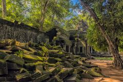 Ta Prohm, part of Khmer temple complex, Asia. Siem Reap, Cambodia. Siem Reap, Cambodia 06.07.2017 Ta Prohm, part of Khmer temple complex, Asia. Siem Reap royalty free stock images