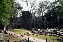 Ta prohm restoration Stock Photos