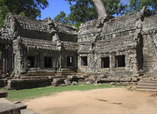 Ta prohm ruins, Angkor Wat Stock Photography