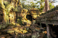 Ta Prohm in Siem Reap, Cambodia Royalty Free Stock Photos