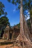 Ta Prohm, Teil des Khmertempelkomplexes, Asien Stadtzentrum von Siem Reap, Kambodscha Alte Khmerarchitektur im Dschungel Lizenzfreies Stockbild