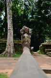 Ta Prohm temple Stock Photography