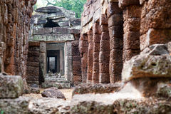 Ta Prohm in Angkor, Cambodia Stock Image