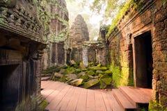 Ta Prohm Temple, Angkor, Cambodia Royalty Free Stock Photo