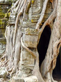 Ta Prohm temple at Angkor Stock Photos