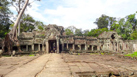Ta Prohm temple at Angkor Royalty Free Stock Image
