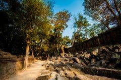 Ta Prohm temple Angkor Wat Stock Photos