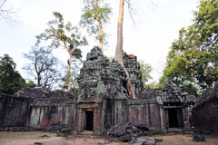 Ta Prohm Temple Stock Image