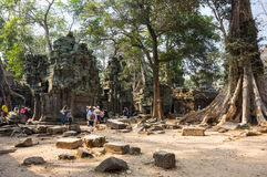 Ta Prohm temple Royalty Free Stock Photos