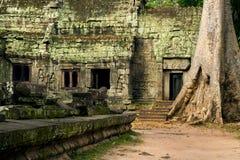 Ta Prohm Temple in Cambodia Royalty Free Stock Photo