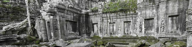 Ta Prohm temple,  Cambodia Stock Photos