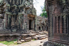 Ta Prohm Temple in Cambodia Stock Photo