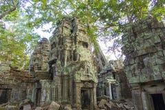 Ta Prohm Temple Cambodia Stock Photo