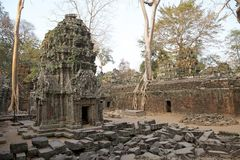 Ta Prohm temple Royalty Free Stock Images