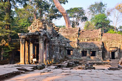 Ta Prohm Temple in Siem Reap, Cambodia. Royalty Free Stock Photography