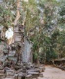 Ta Prohm Temple in Siem Reap, Cambodia Stock Image